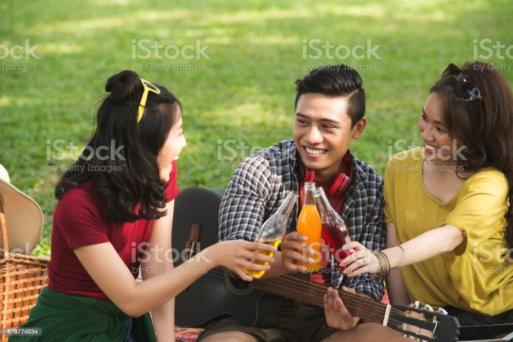 Toasting friends royalty-free stock photo