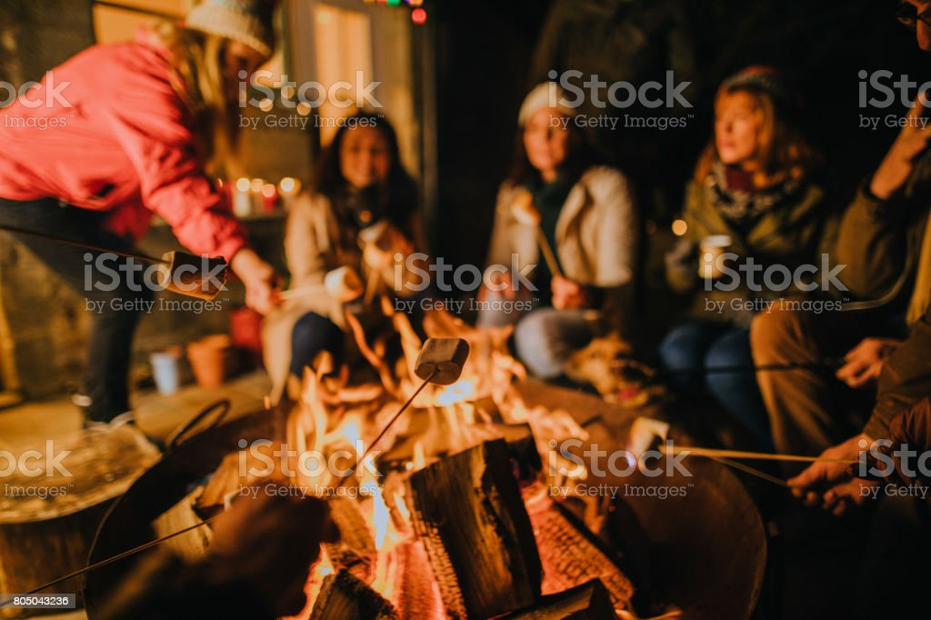 Toasting Marshmallows on the Fire stock photo