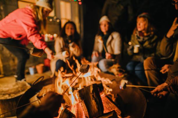 Toasting Marshmallows on the Fire stock photo
