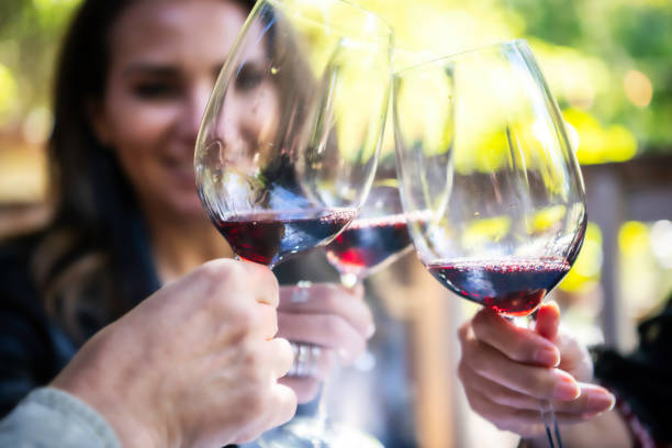Toasting mature women toasting with red wine winetasting stock pictures, royalty-free photos & images