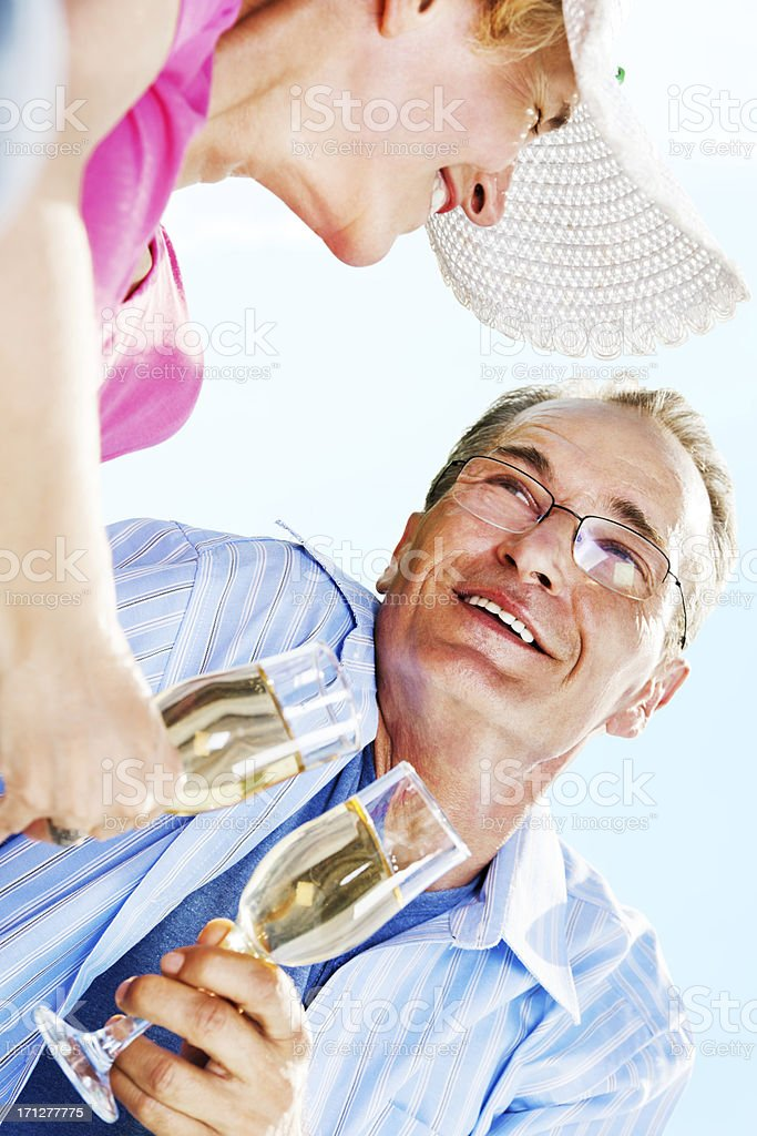 Toasting to their relationship. royalty-free stock photo