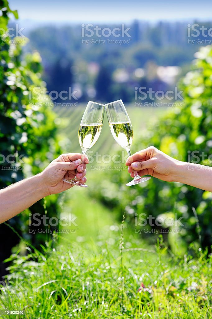 Toasting with two glasses of champagne in the vineyard royalty-free stock photo