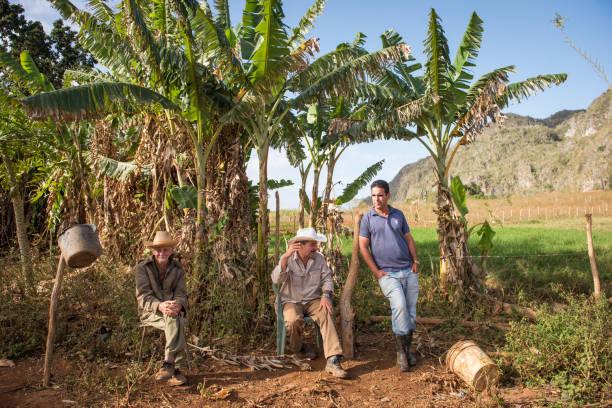 Tabakbauern machen Sie eine Pause in der Nähe von Tabakfeld, Valle de Vinales, Kuba – Foto