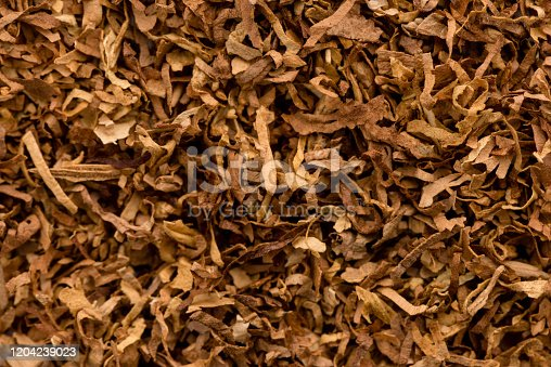 Plant, Tobacco Crop, Tobacco Product, Leaf, Smoking Issues