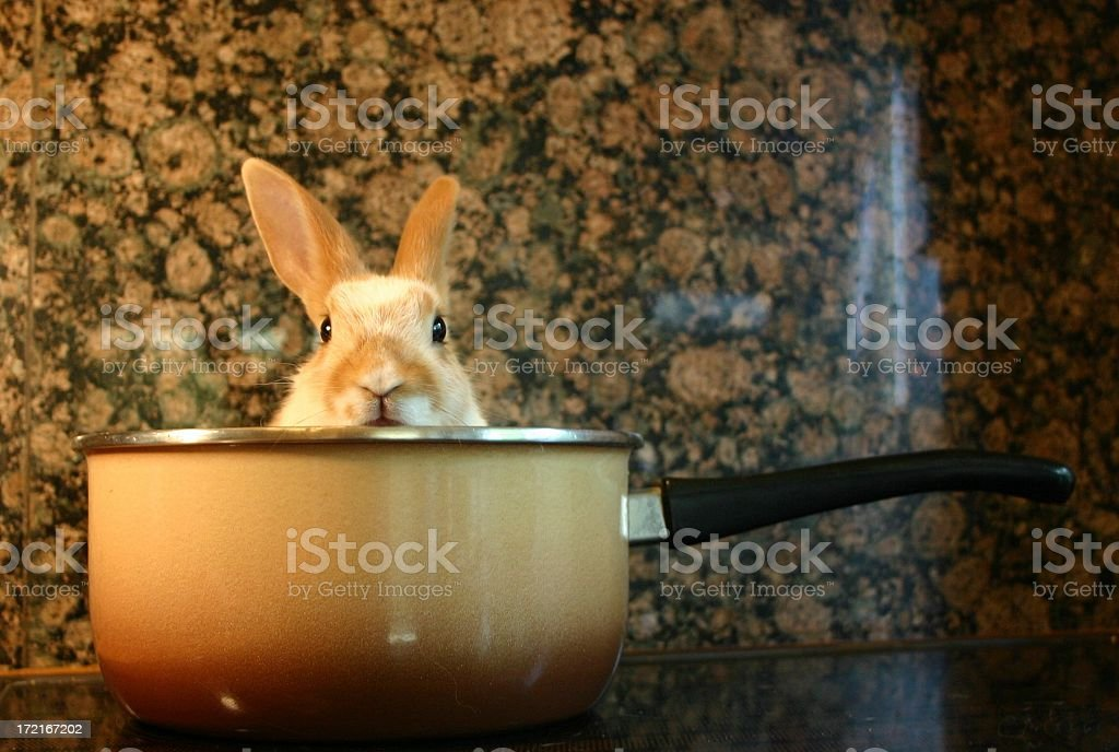 today's recipe stock photo