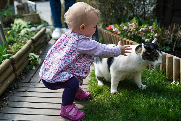 Toddler and cat picture id477404940?b=1&k=6&m=477404940&s=612x612&w=0&h=spvdh6m6whc5aglasjvam70qwxxxrb02najgzobnxme=