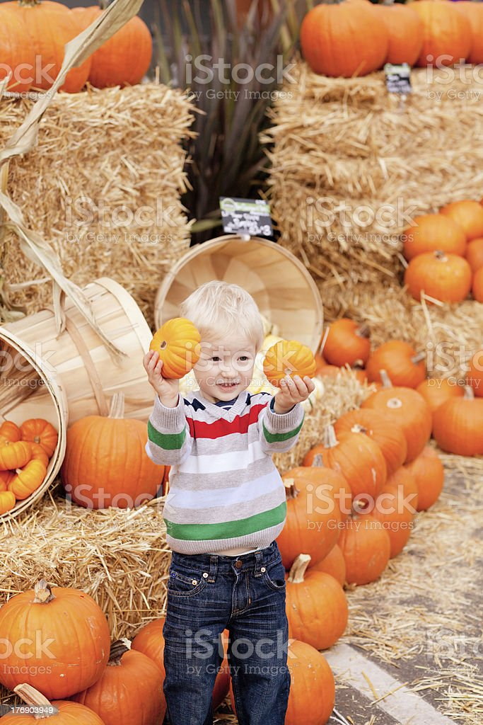 toddler at the pumpkin patch royalty-free stock photo