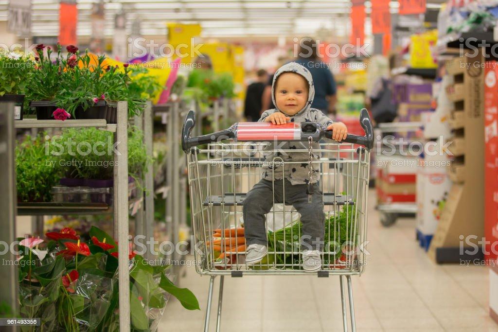 036f2e9240f56d Kleinkind Baby Junge Sitzt In Einem Einkaufswagen Im Supermarkt ...