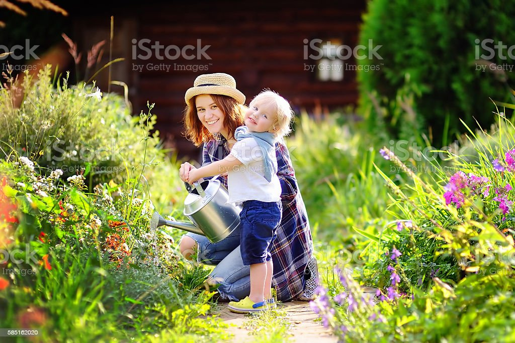 Toddler boy and his mother watering plants in the garden stock photo