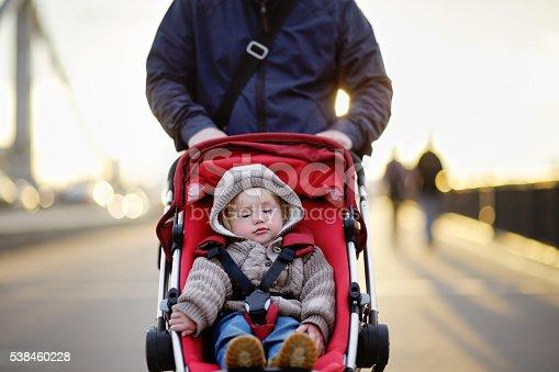 istock Toddler boy in stroller 538460228