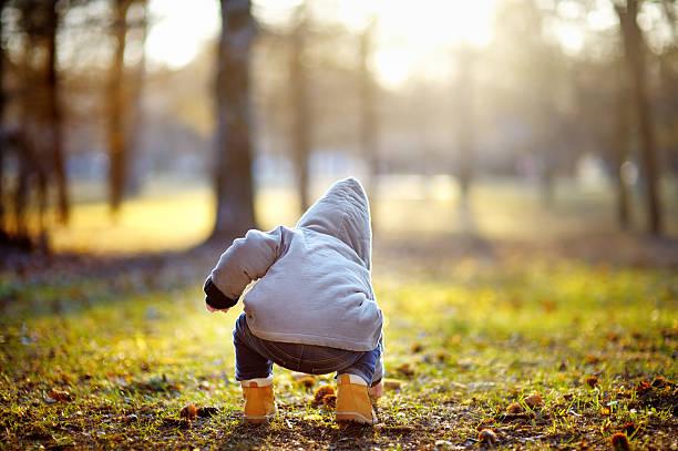 toddler boy playing outdoors - bos spelen stockfoto's en -beelden