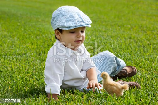 toddler boy with a baby chick.  rr