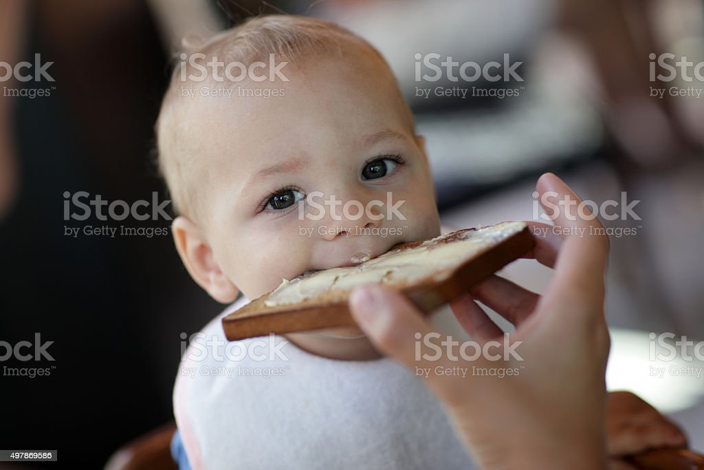 Toddler eating toast stock photo