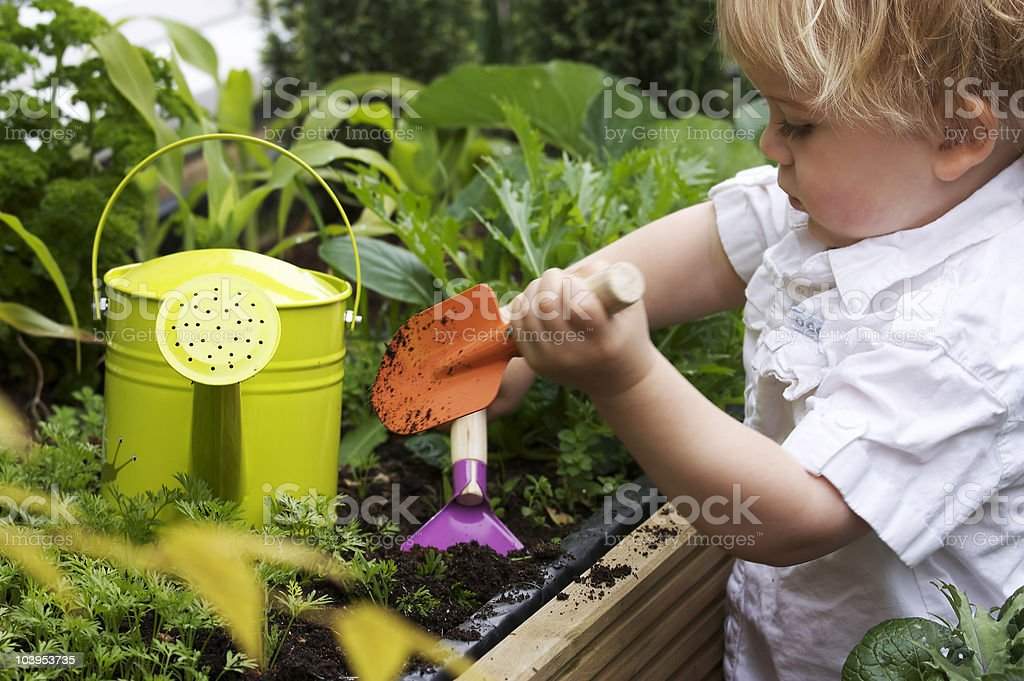 toddler gardening stock photo