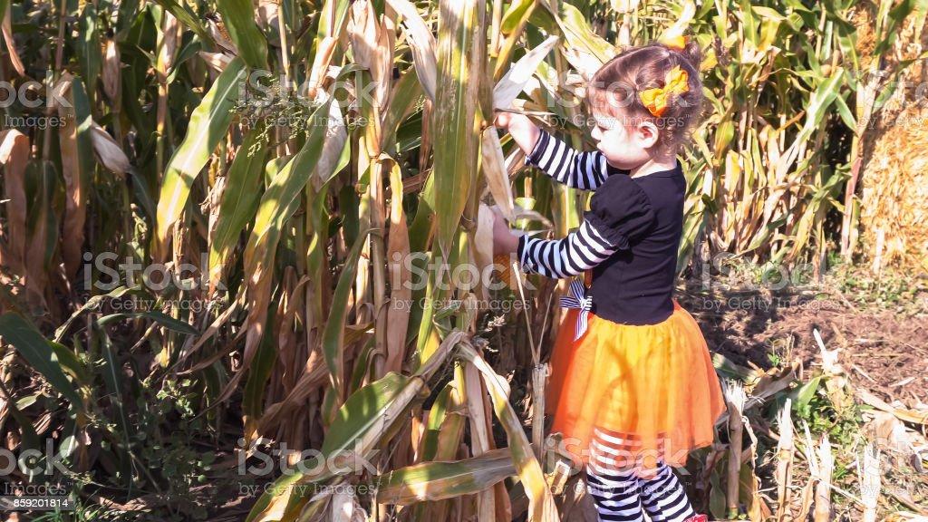 Peuter Halloween.Meisjeskleding Van De Peuter In Leuke Halloween In Mais