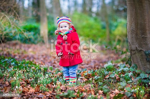 istock Toddler girl playing with first snowdrop flowers in spring park 486624529