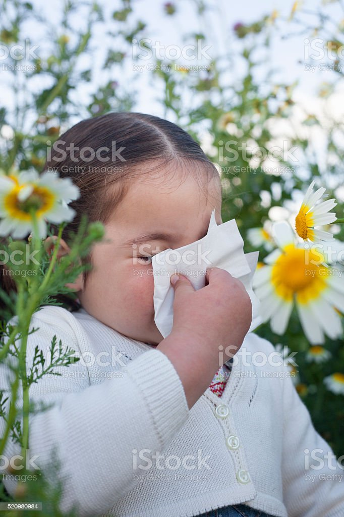 Toddler girl sneezing in a daisy flowers stock photo