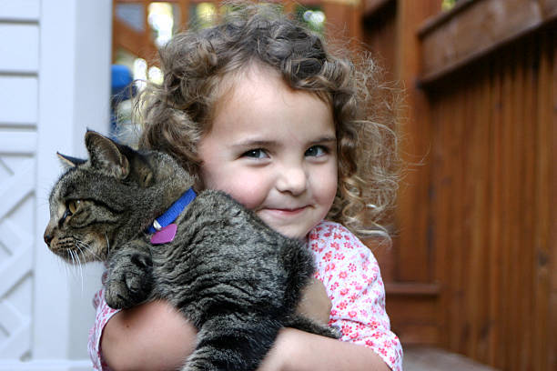 toddler girl with cat stock photo