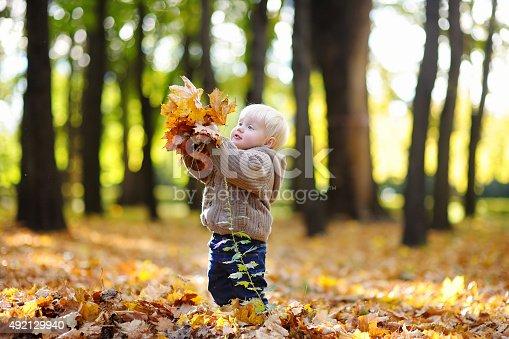 istock Toddler having fun in autumn 492129940