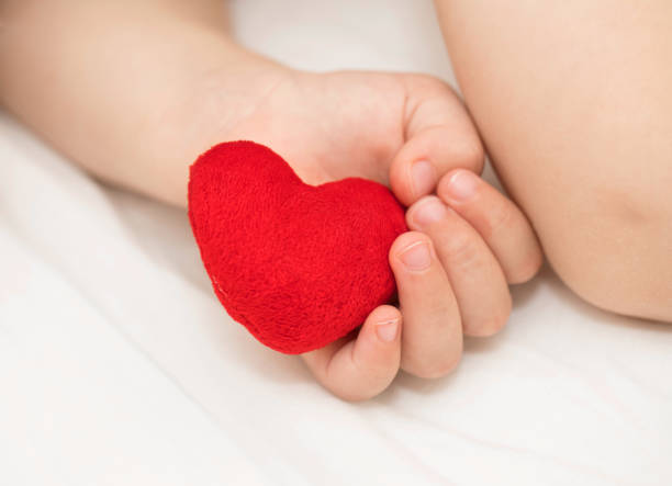Toddler keeps red plush heart. stock photo