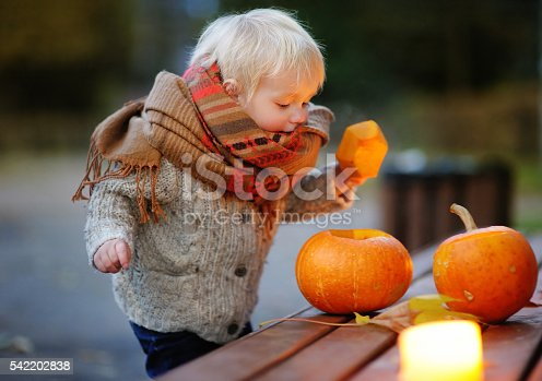 istock Toddler playing with halloween pumpkins 542202838