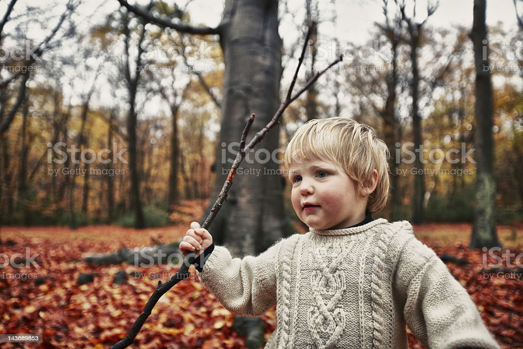 Toddler walking in autumn leaves stock photo