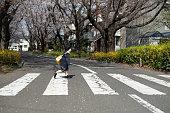 幼児は、交差点を歩く