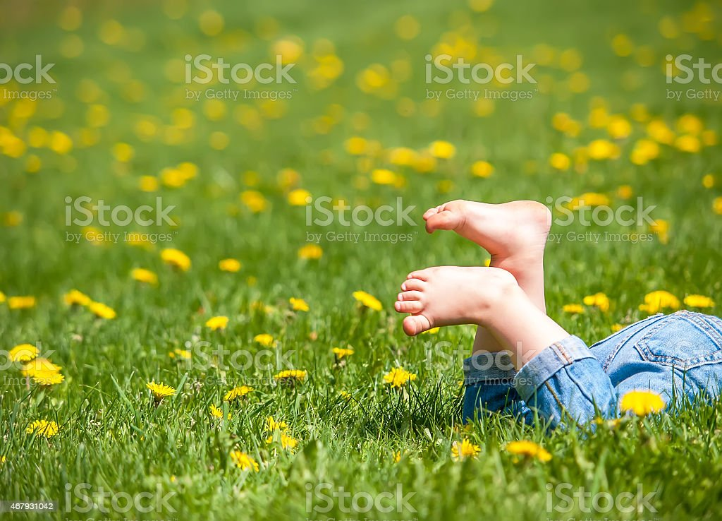 Toddler's Bare Feet in a Lawn Full of Dandelions stock photo