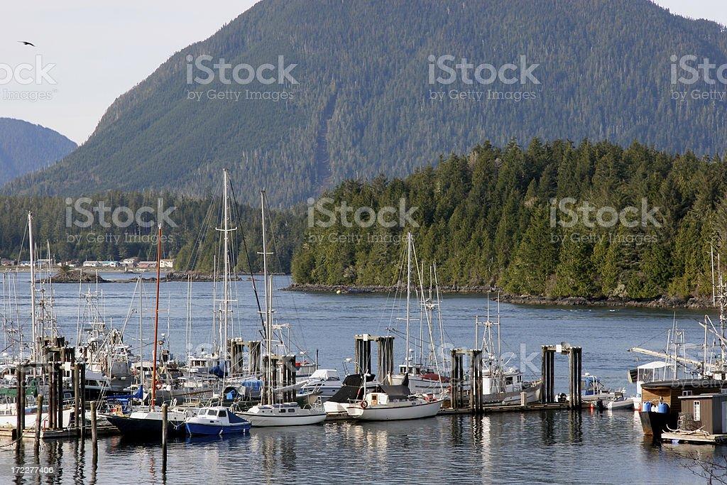 Tofino, A Wonderful Hidden Beauty Spot In British Columbia royalty-free stock photo