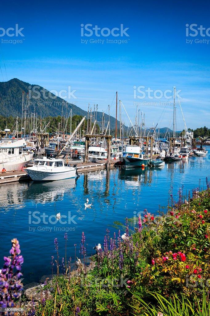 Tofino Harbour in Tofino, British Columbia, Canada stock photo