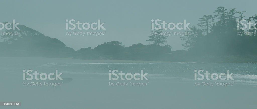 Tofino Surfers on Green stock photo