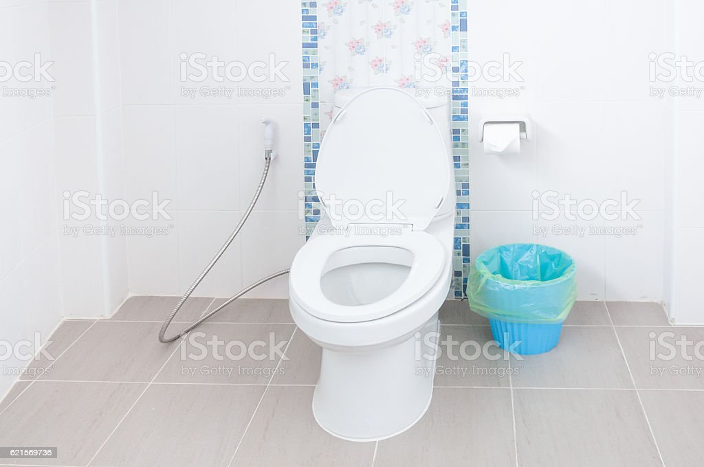 Toilet bowl in a modern bathroom and Blue bins photo libre de droits