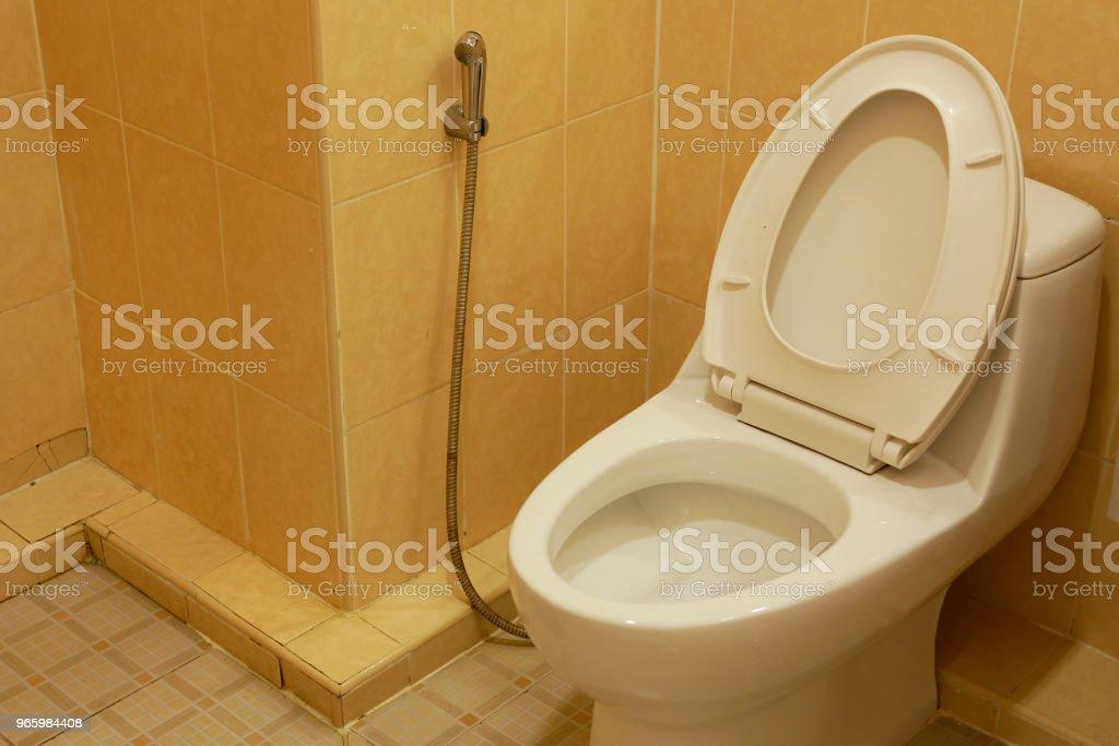 WC-pot - Royalty-free Badkamer Stockfoto