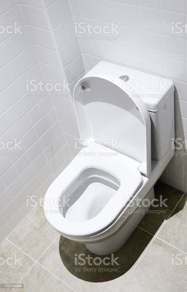 Surprising Toilet Bowl With Open Seat Cover Stock Photo Download Beatyapartments Chair Design Images Beatyapartmentscom