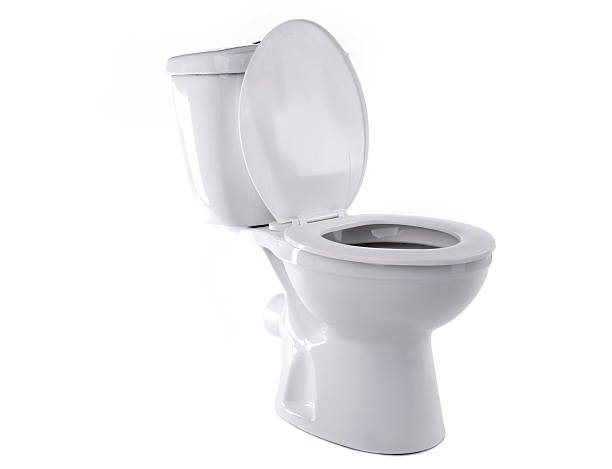 Sanitário isolado - foto de acervo