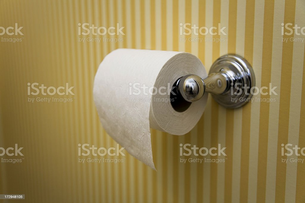 Toilet Paper - Hanging OVER, in Upscale Bathroom royalty-free stock photo