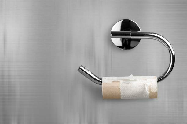 Toilet paper. A Roll of Toilet Paper Hanging on a Toilet Paper Holder toilet paper stock pictures, royalty-free photos & images