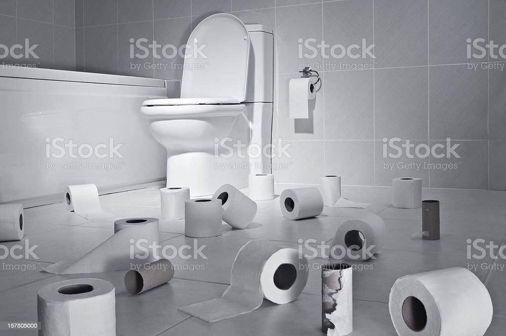 Toilet Paper stock photo