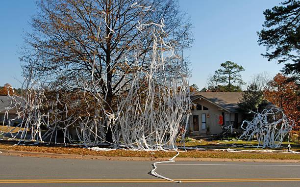 Toilettenpapier ist die ultimative Waffe – Foto