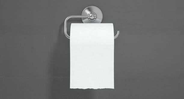 Toilet Roll Concept stock photo