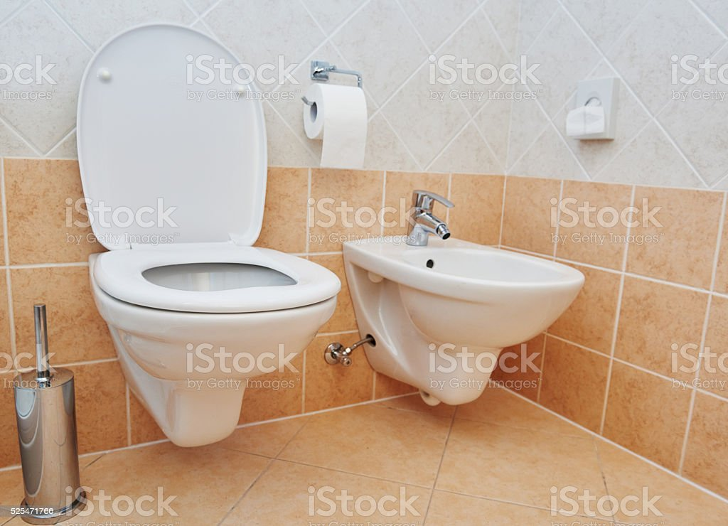 Toilet Sanitary Sink Or Bowl Bidet And Paper stock photo | iStock