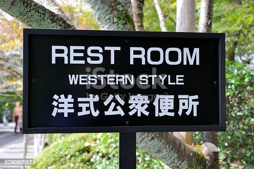 487881729 istock photo Toilet sign in Japanese and English language 529050517