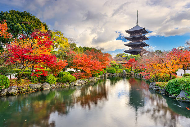 toji pagoda in autumn - kyoto fotografías e imágenes de stock