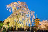 -ji の塔に桜の木。