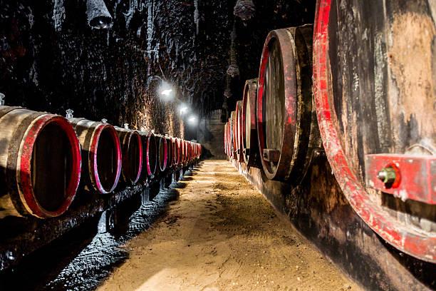 tokaj hungary cellar barrel furmint muskotaly aszu edes szamorodni - 匈牙利文化 個照片及圖片檔