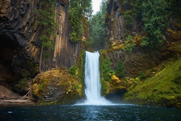 cachoeira toketee - cascata - fotografias e filmes do acervo