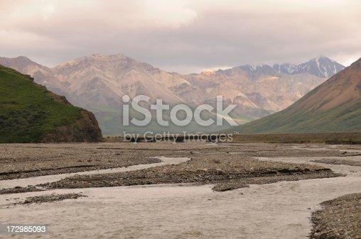 Toklat River in Denali National Park