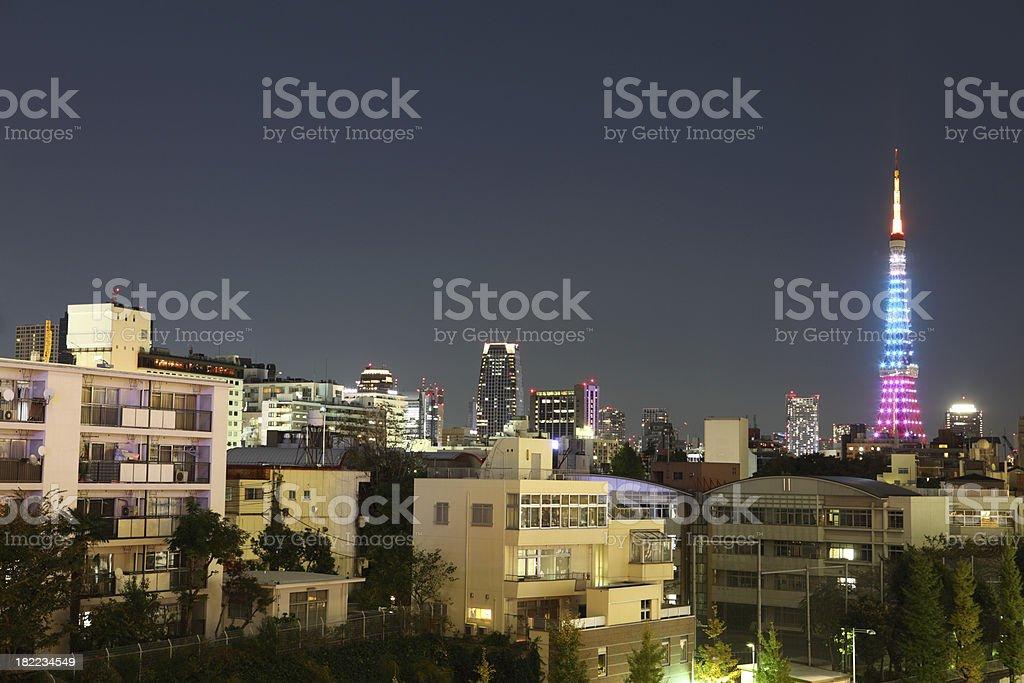 Tokyo at night (XXXL) royalty-free stock photo