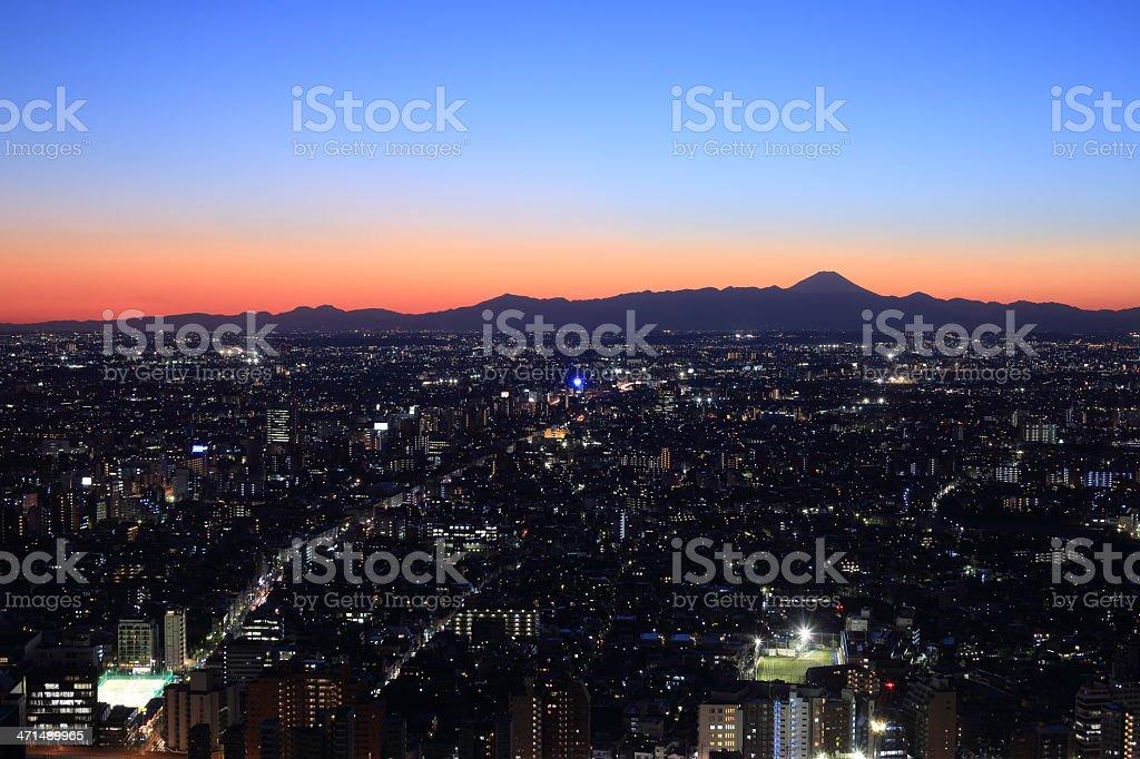 Tokyo city and Mt.Fuji royalty-free stock photo