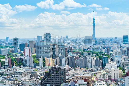 1184122904 istock photo Tokyo city skyline , Japan. 1222132193
